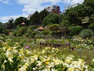 The Seafront Gardens