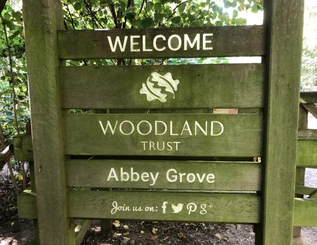 The Grove and Abbey Grove